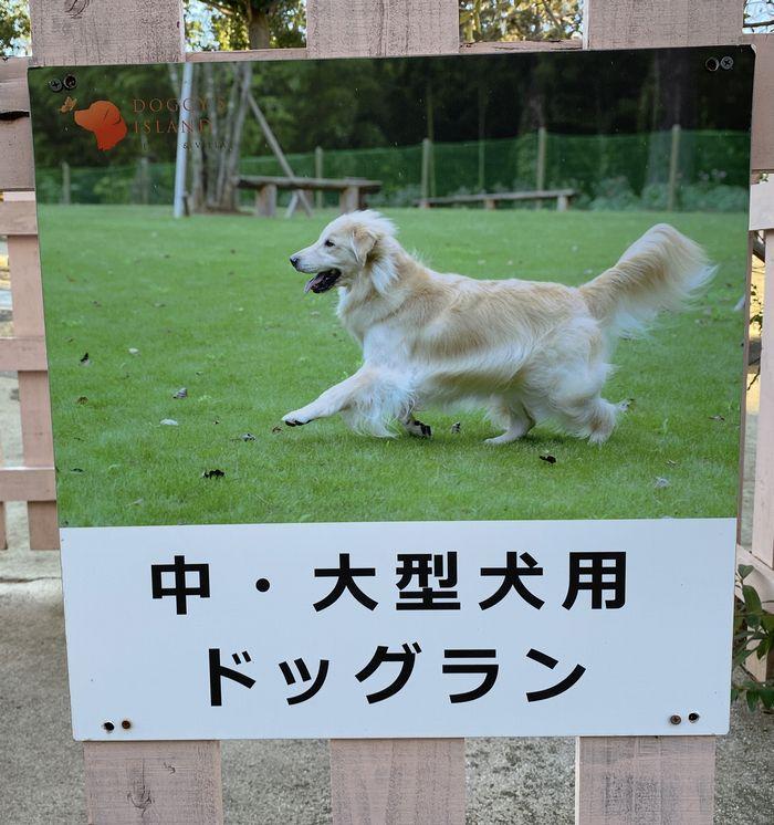 大型犬・中型犬
