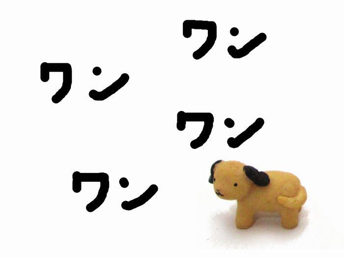留守番中に吠える犬へのトレーニング